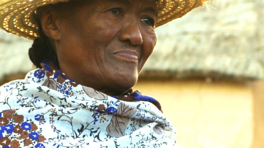 Abeline – Madagascar