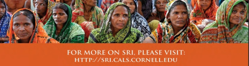sri wOMEN cORNELL END