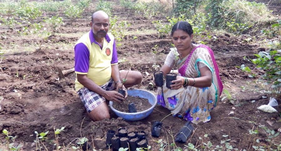 Enterprising woman farmer charts a path toprosperity